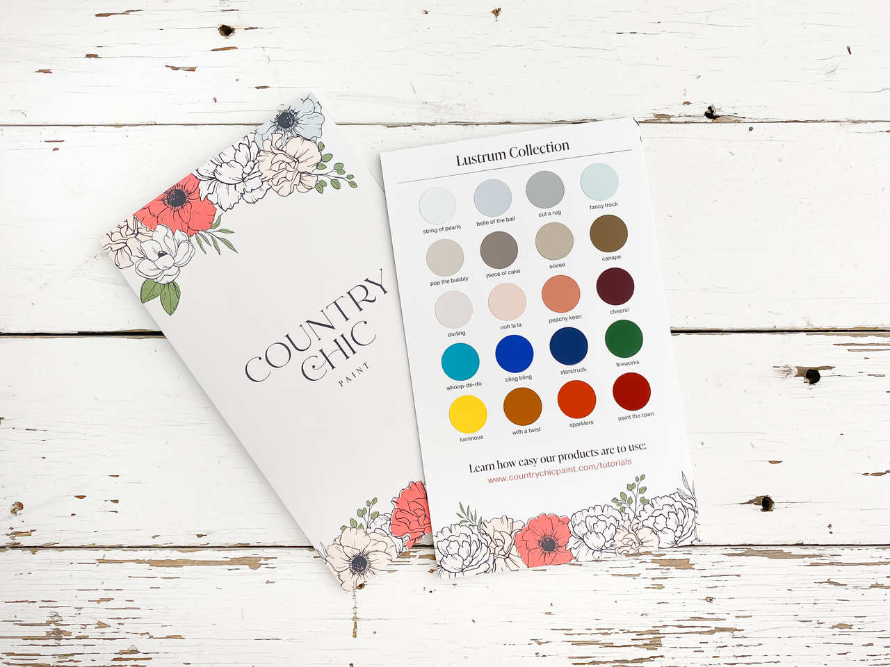 Front and back View of Country Chic Paint Hand Painted Color Card