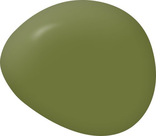Secret Garden olive avocado green paint color swatch by Country Chic Paint